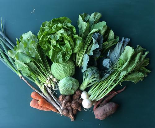 野菜セット小